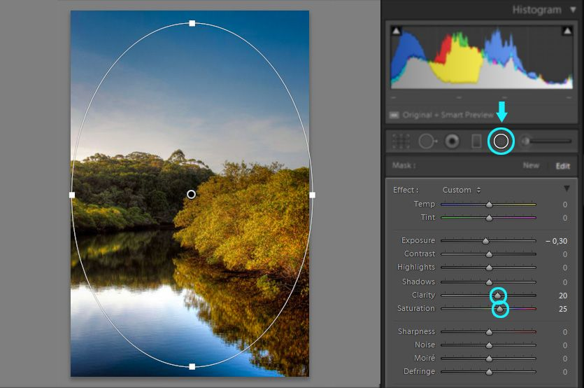 Create a radial filter mask