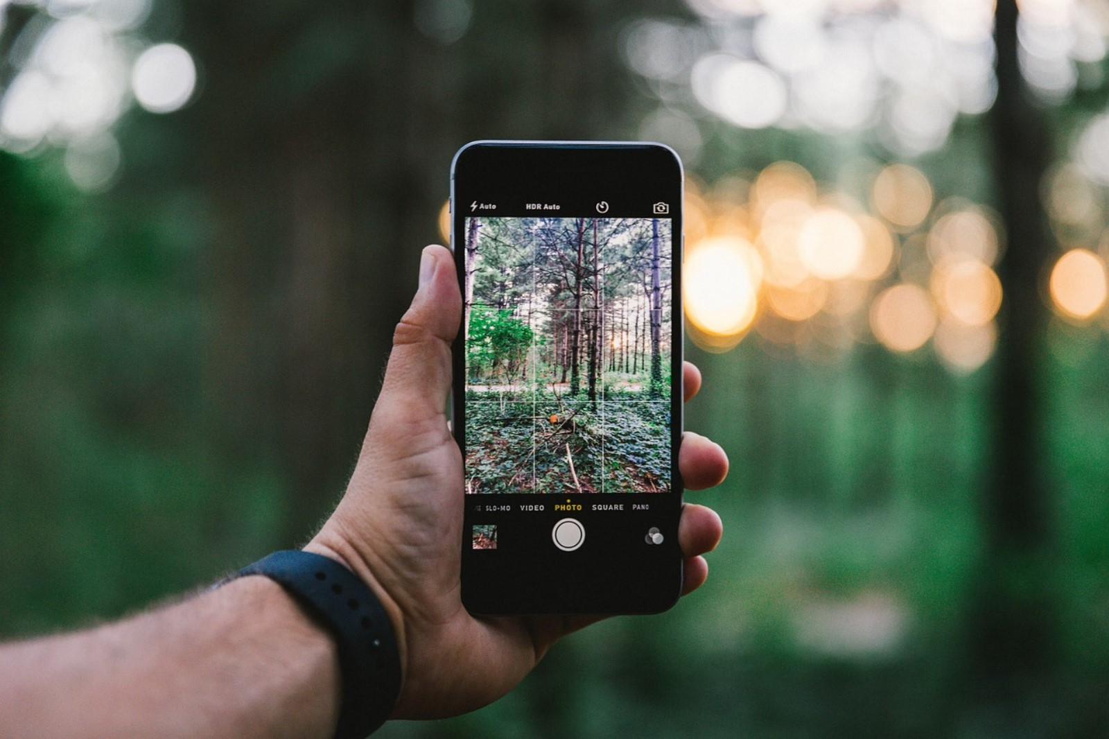 How to work with Lightroom Mobile