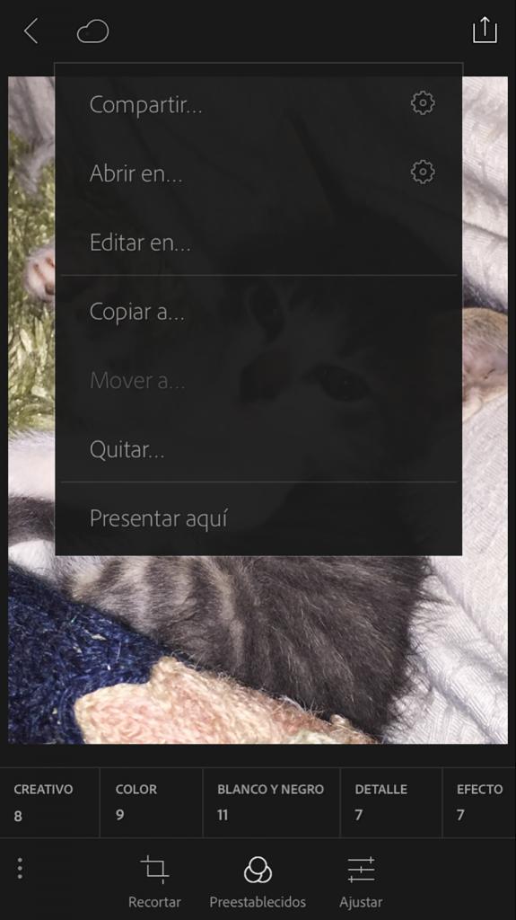 09_lr_mobile