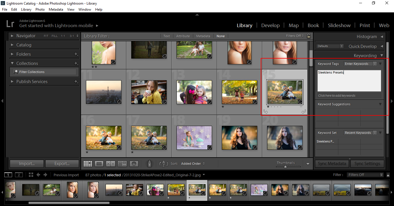 how to add lens profile to lightroom 5