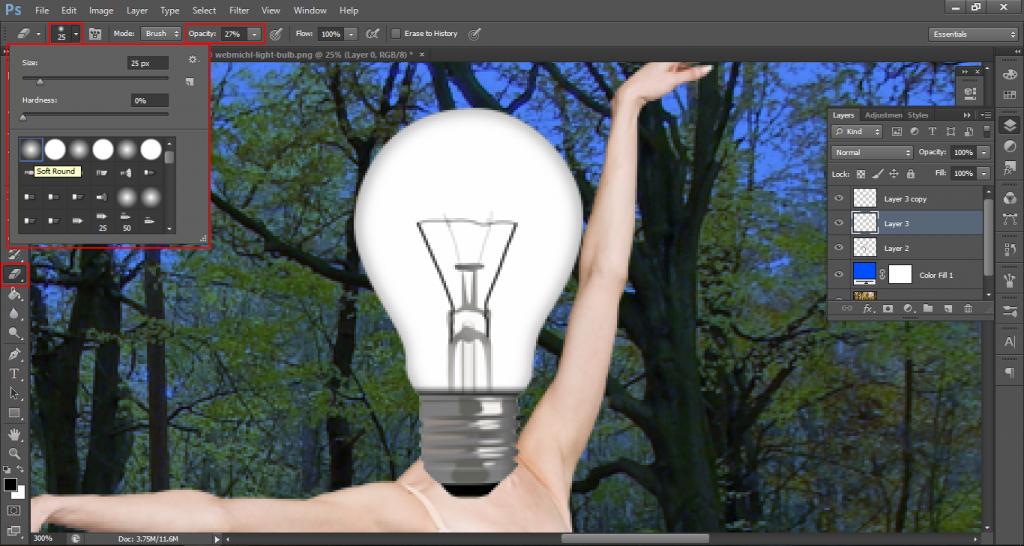 bulb13