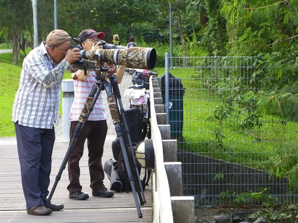 photographers-238565_1920
