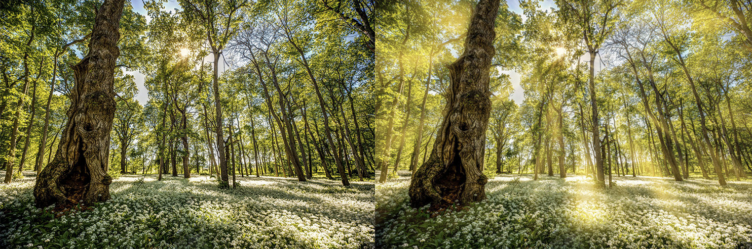 Overlay Example-photos (6 av 26) (2)-2