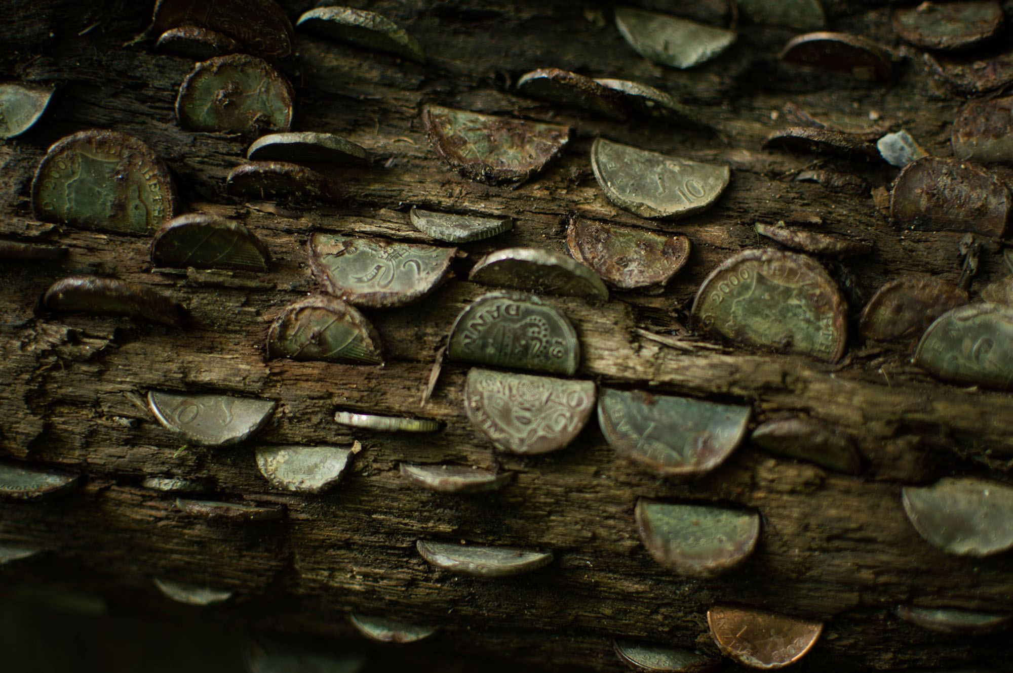 Lydford Gorge Coin Log