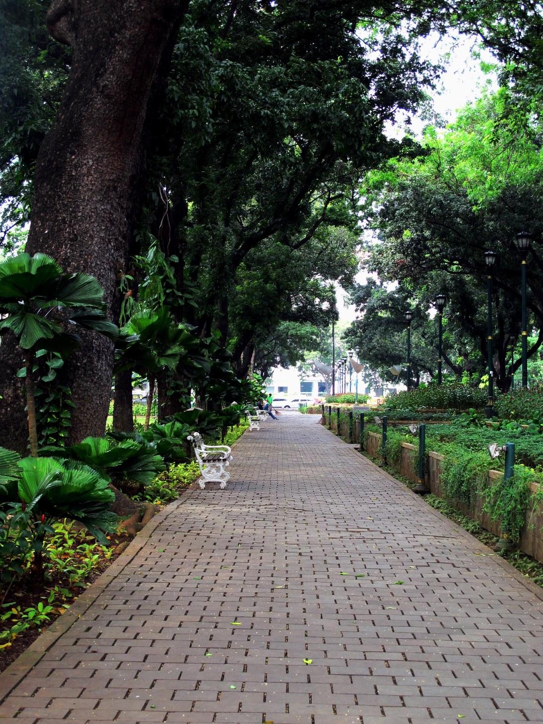 Taman Suropati (Canon)