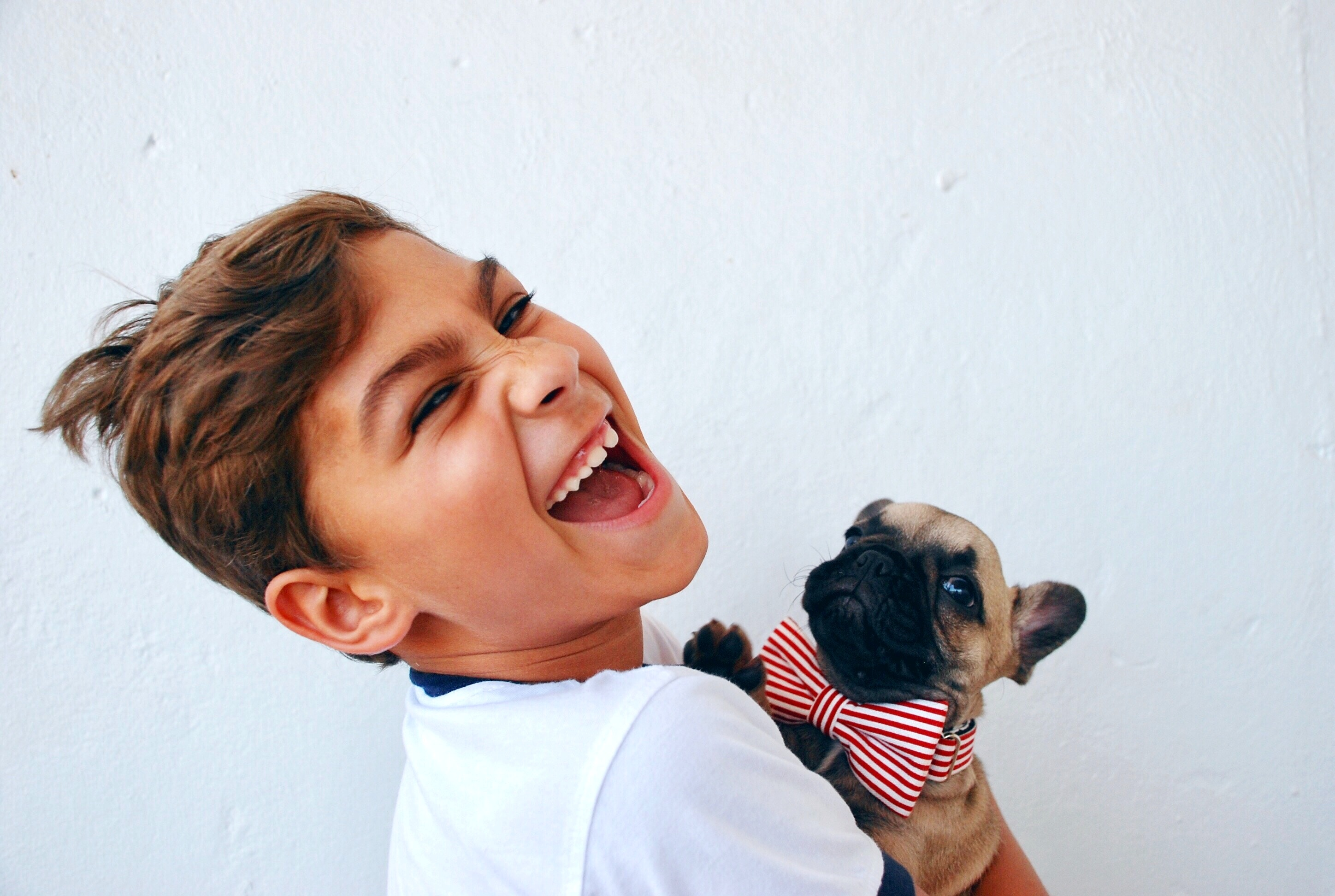 boy laughing with French Bulldog