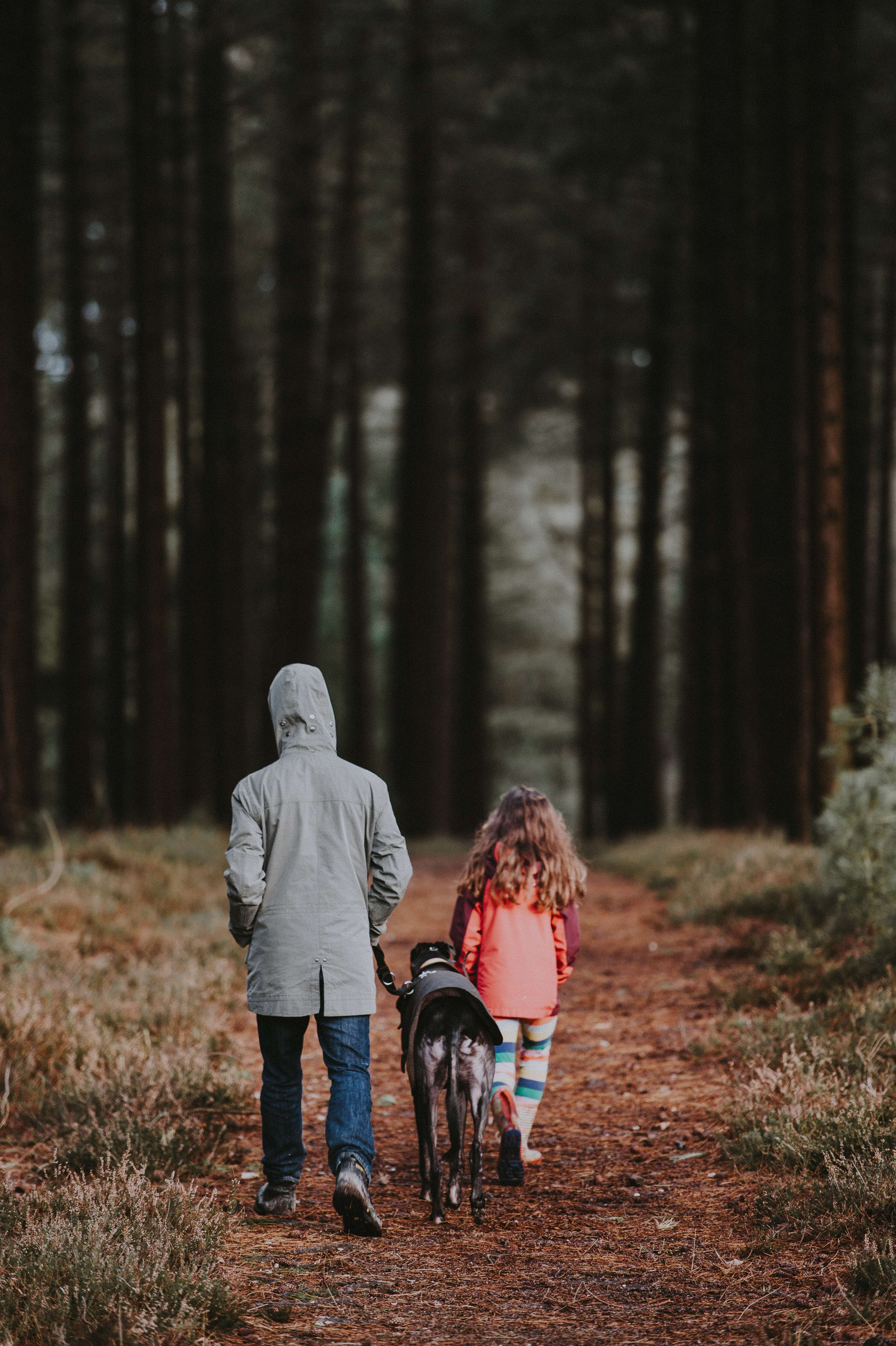 children with pet walking in the forest