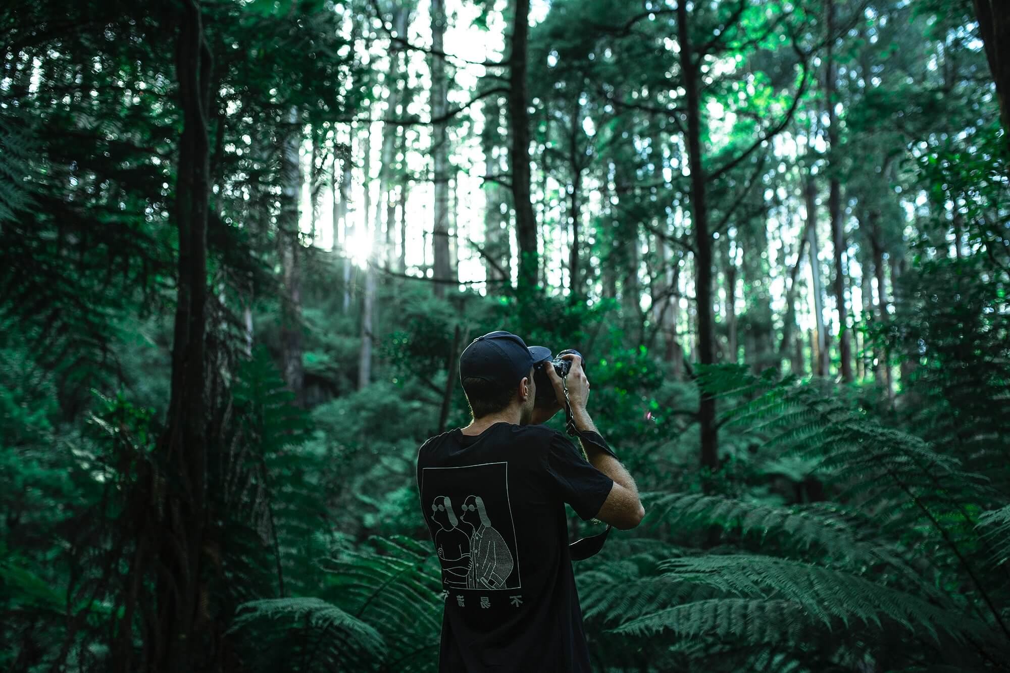 photographer rainforest