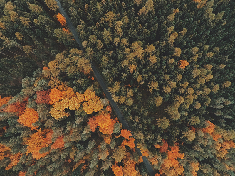 camping trip drone photography II