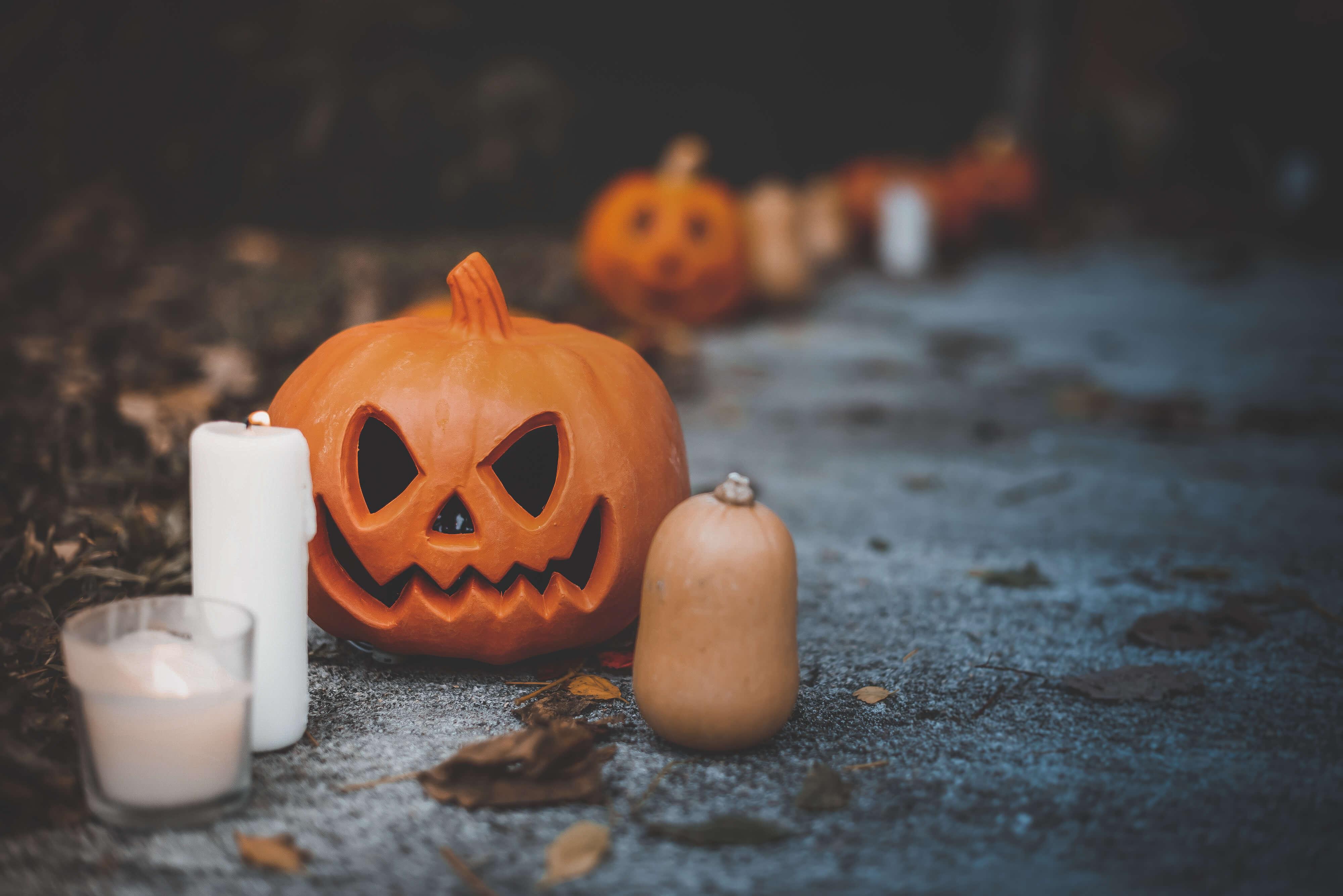 https://sleeklens.com/wp-content/uploads/2018/10/halloween-fall-lightroom-presets-sleeklens-after-3.jpg