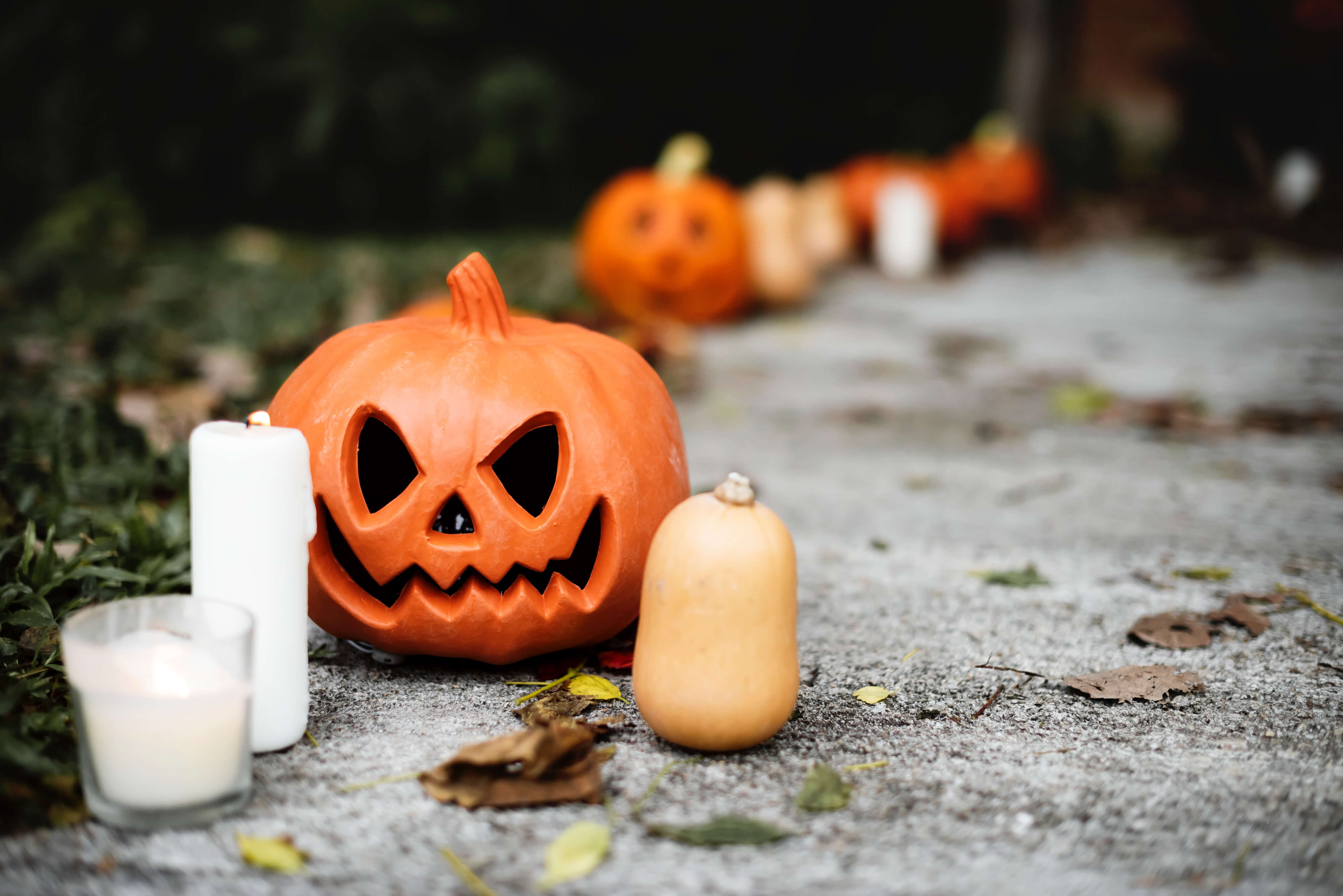 https://sleeklens.com/wp-content/uploads/2018/10/halloween-fall-lightroom-presets-sleeklens-before-3.jpg