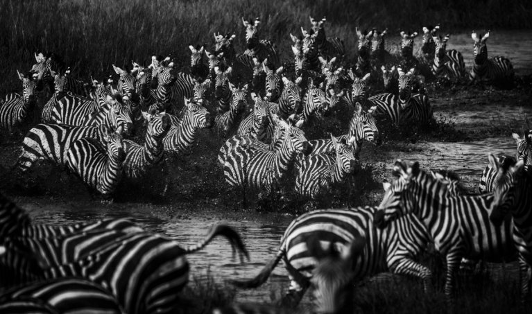 Photographer Spotlight: Interview with Laurent Baheux