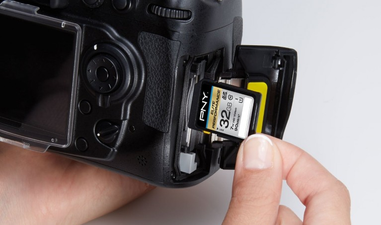 23 Best and Cheapest SD Cards for Photographers