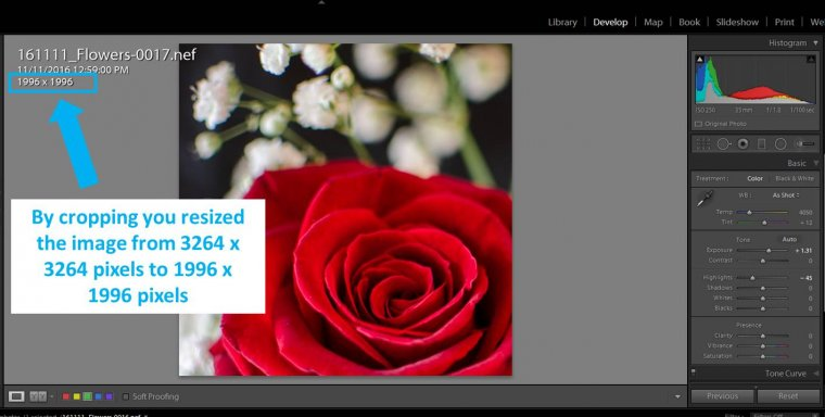 How to Resize Images in Lightroom for Printing and Web? | Sleeklens