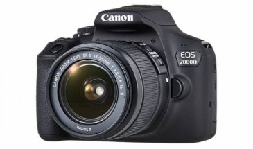 Canon EOS 2000D Rebel T7 Review