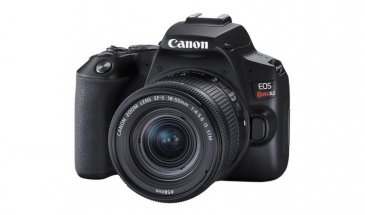 Canon 250D Review: A Budget Option to Consider
