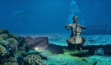 Underwater photography at hand! The Essentials You Should Know