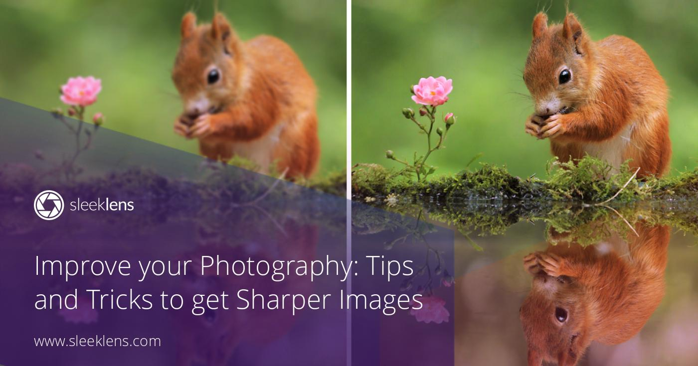 Improve your Photography: Tips and Tricks to get Sharper Images
