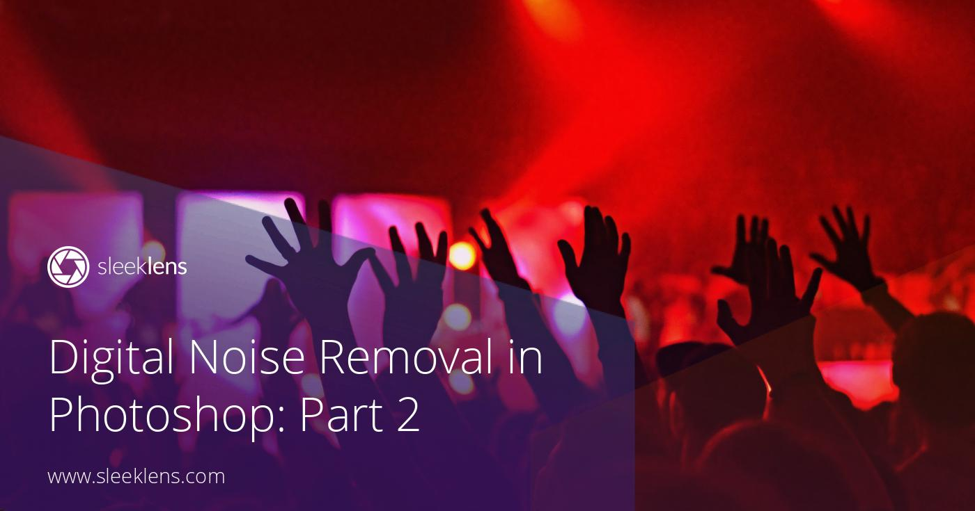 Digital Noise Removal in Photoshop: Part 2