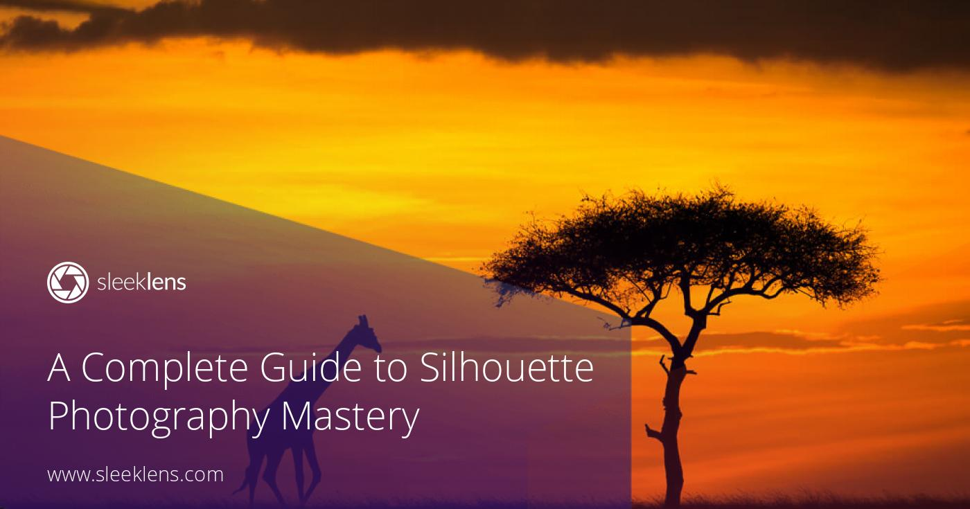 Dramatic Effects: A Complete Guide to Silhouette Photography Mastery