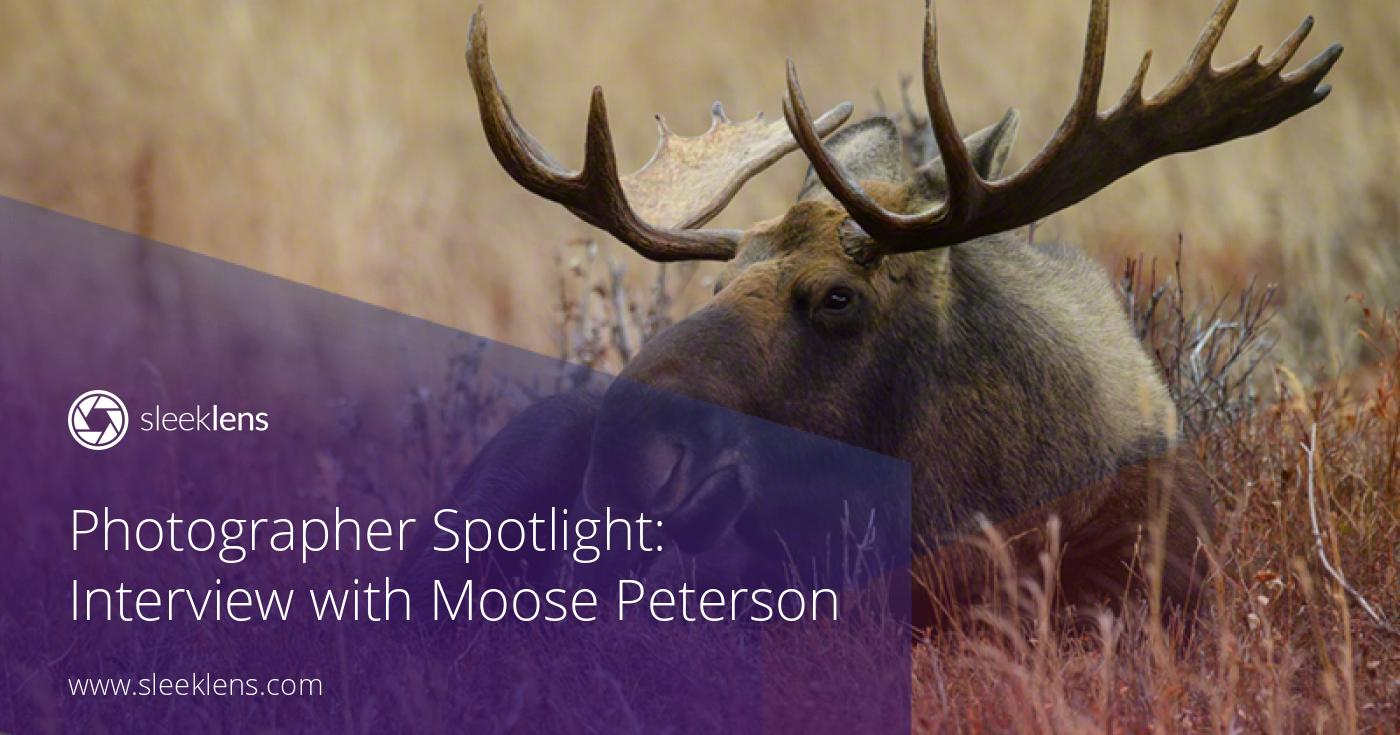 Photographer Spotlight: Interview with Moose Peterson